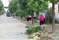 广华寺办事处全力推进农村人居环境整治